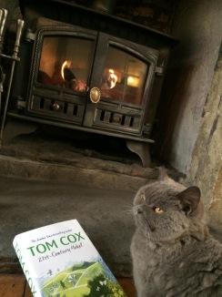 Tom Cox - Lola